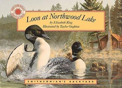 Loon at Northwood Lake - Ring, Elizabeth
