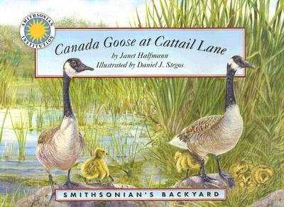 Canada Goose at Cattail Lane - Halfmann, Janet