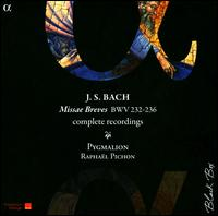 J.S. Bach: Missae Breves Complete Recordings - Anna Reinhold (soprano); Carlos Mena (alto); Christian Immler (bass); Emilianó Gonzalez Toro (tenor);...