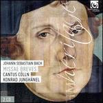 Johann Sebastian Bach: Missae Breves