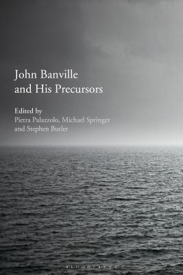 John Banville and His Precursors - Palazzolo, Pietra (Editor), and Springer, Michael (Editor), and Butler, Stephen (Editor)
