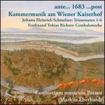 Kammermusik am Wiener Kaiserhof