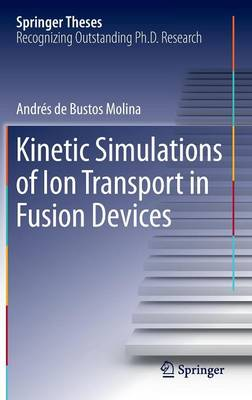 Kinetic Simulations of Ion Transport in Fusion Devices - Bustos Molina, Andres De