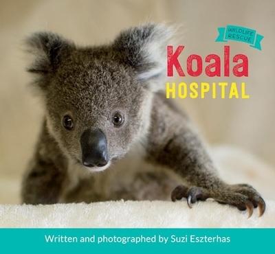 Koala Hospital - Eszterhas, Suzi