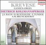 Krevese Gansen-Orgel