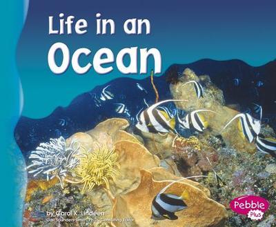 Life in an Ocean - Lindeen, Carol K
