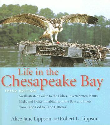 Life in the Chesapeake Bay - Lippson, Alice Jane, Professor, and Lippson, Robert L, Professor
