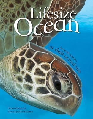 Lifesize Ocean - Ganeri, Anita