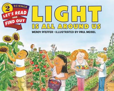 Light Is All Around Us - Pfeffer, Wendy, Professor