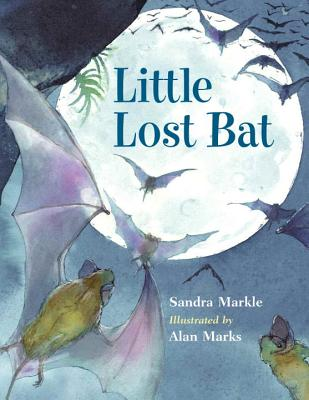 Little Lost Bat - Markle, Sandra, and Marks, Alan (Illustrator)