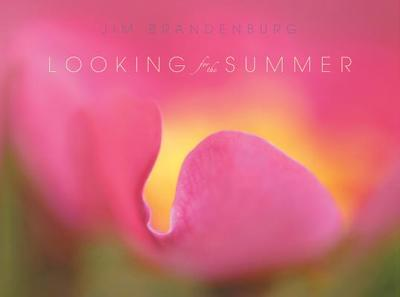 Looking for the Summer - Brandenburg, Jim