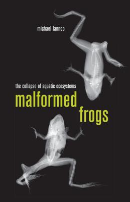 Malformed Frogs: The Collapse of Aquatic Ecosystems - Lannoo, Michael