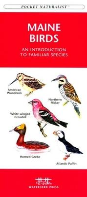 Maryland & DC Birds - Kavanagh, James
