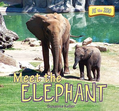 Meet the Elephant - Keller, Susanna