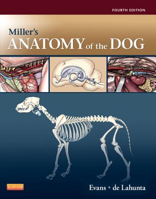 Miller's Anatomy of the Dog - Evans, Howard E, and De Lahunta, Alexander