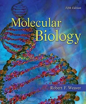 Molecular Biology - Weaver, Robert