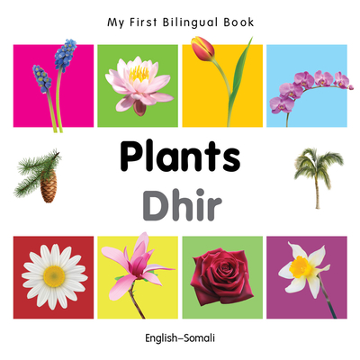 My First Bilingual Book-Plants (English-Somali) - Milet Publishing