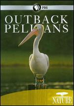 Nature: Outback Pelicans