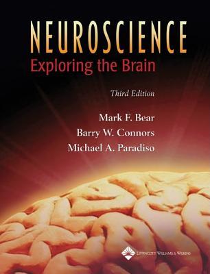 Neuroscience: Exploring the Brain - Bear, Mark F, PhD, and Connors, Barry W, PhD, and Paradiso, Michael A, PhD