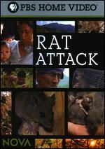 NOVA: Rat Attack