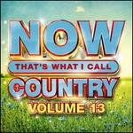 Now That's What I Call Country, Vol. 13