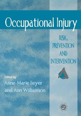 Occupational Injury - Feyer, Anne-Marie (Editor)
