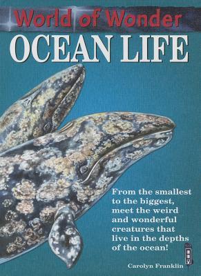 Ocean Life -