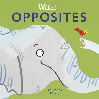 Opposites - Dicmas, Courtney (Illustrator)