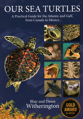 Our Sea Turtles: A Practical Guide for the Atlantic and Gulf, from Canada to Mexico - Witherington, Blair, and Witherington, Dawn