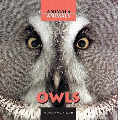 Owls - Mudd-Ruth, Maria