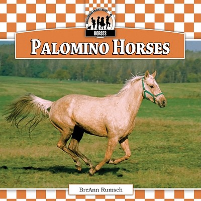 Palomino Horses - Rumsch, BreAnn