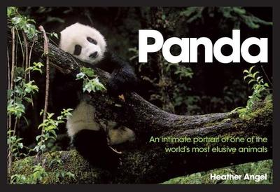 Panda: An Intimate Portrait of One of the World's Most Elusive Characters - Angel, Heather