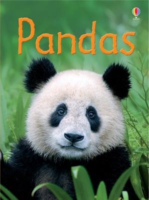 Pandas - Maclaine, James