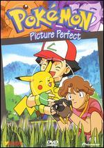 Pokemon, Vol. 17: Picture Perfect