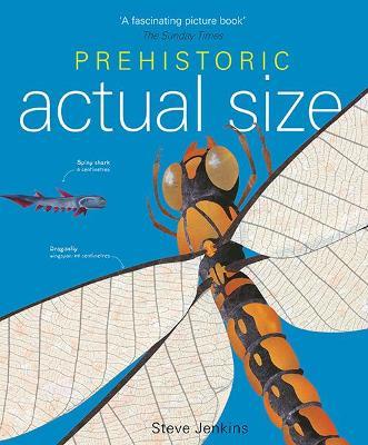 Prehistoric Actual Size - Jenkins, Steve