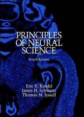 Principles of Neural Science - Kandel, Eric, and Schwartz, James, and Jessell, Thomas