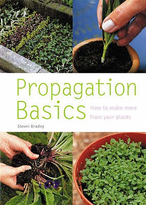 Propagation Basics: How to Make More from Your Plants -