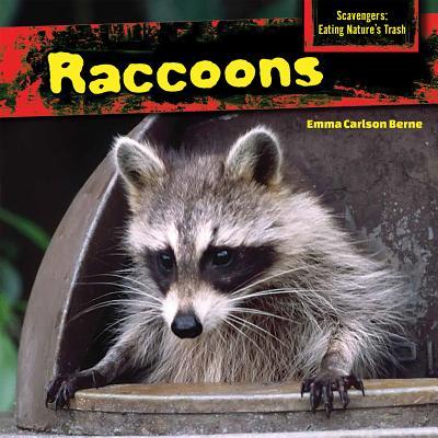 Raccoons - Berne, Emma Carlson