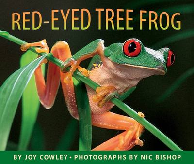 Red-Eyed Tree Frog - Cowley, Joy