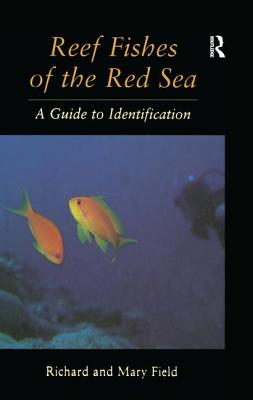 Reef Fish of the Red Sea - Field