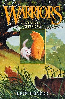 Rising Storm: Warriors 4 - Hunter, Erin