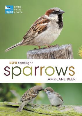 RSPB Spotlight Sparrows - Beer, Amy-Jane