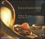 Salonhorn