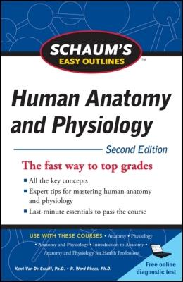 Schaum's Easy Outline of Human Anatomy and Physiology, Second Edition - Van de Graaff, Kent M, and Rhees, R Ward