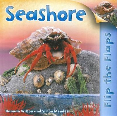 Seashore - Wilson, Hannah, and Mendez, Simon