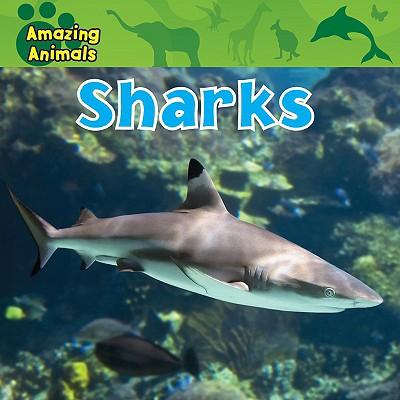 Sharks - Wilsdon, Christina