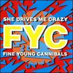 She Drives Me Crazy [3 Tracks]