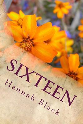 Sixteen - Gibson, Adam Sebastian (Translated by), and Black, Hannah