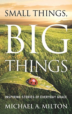 Small Things, Big Things: Inspiring Stories of Everyday Grace - Milton, Michael A