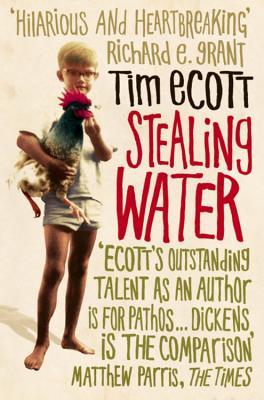 Stealing Water - Ecott, Tim